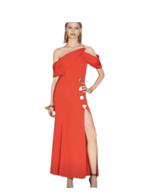 Rent: Designer dress BNWT Size 10