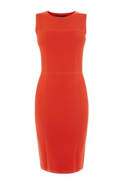 Rent: Red bodycon knit dress Size 6